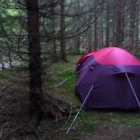 Réflexions sur un voyage en Norvège
