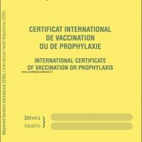 Récapitulatif sur les vaccinations en voyage