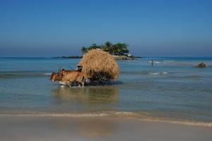 La côte birmane par Tartarin