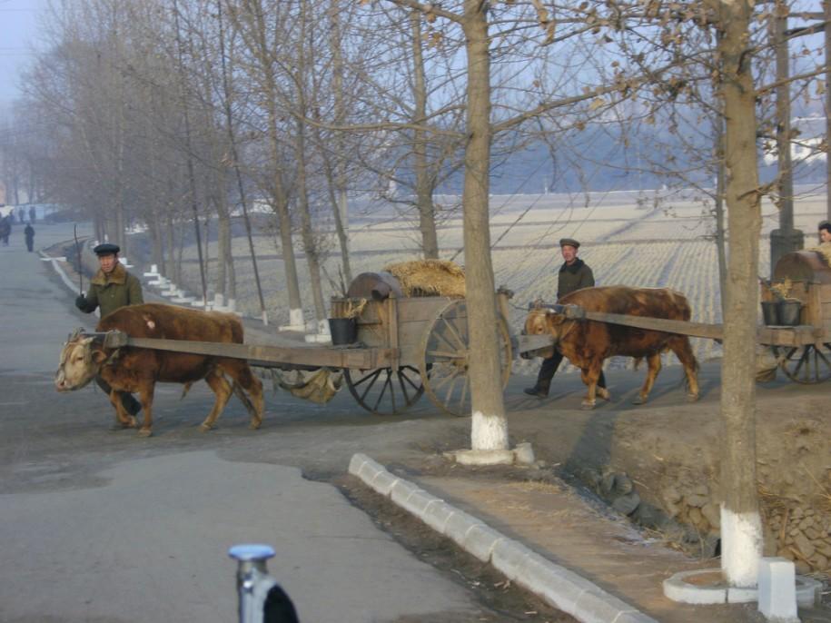 Dans la campagne au nord de Pyongyang par Jensowagner