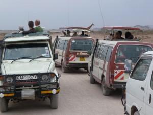 Un troupeau de voiture en migration