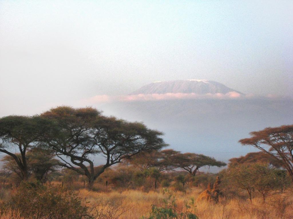 Le Kilimandjaro et ses glaces éternelles