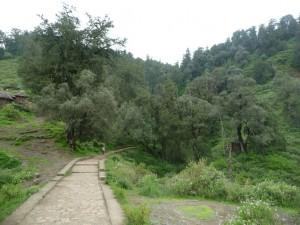 Le chemin pour accéder à Yemrehanna Kristos