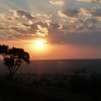 5 raisons pour voyager en Afrique