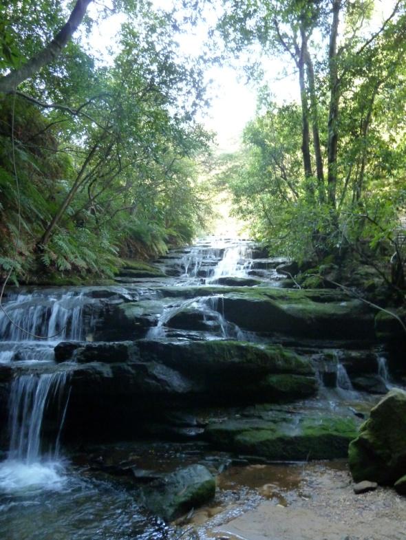 Une des cascades des Blue Mountains